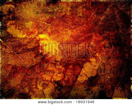 Autumn background, leaves