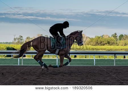 Morning Workouts on Dirt Track with jockey silhouette