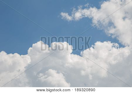 Looking up a blue sky and puffly clouds.