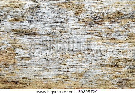 Weathered aged distressed rustic wood, close up