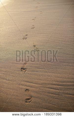 Footpath Of Foot Prints On Beach Sand