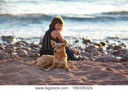 Stray dog sitting on the beach in front of a smiling young girl