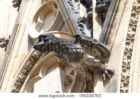 14th century St. Vitus Cathedral gargoyle stone bird Prague Czech Republic. It is a Roman Catholic metropolitan cathedral in Prague the seat of the Archbishop of Prague.