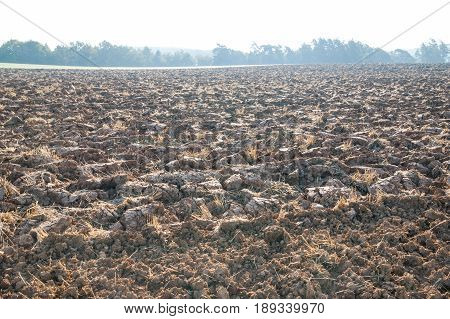 Plowed field with a tree lined horizon