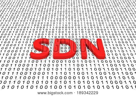SDN in the form of binary code, 3D illustration
