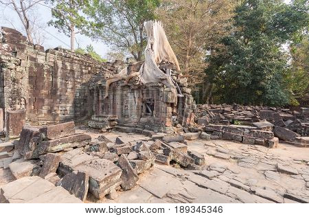 Huge roots on the temple in Pra Khan Siem Reap Cambodia