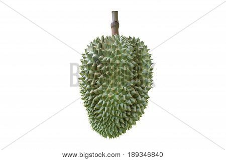 Durian isolated on white background. This has clipping path.