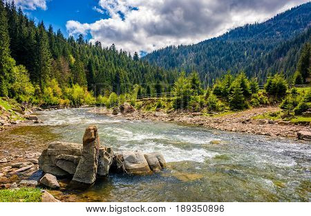 River Among The Forest In Picturesque Mountains In Springtime