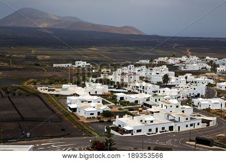 City Cultivation Home Viticulture  Winery Lanzarote Spain