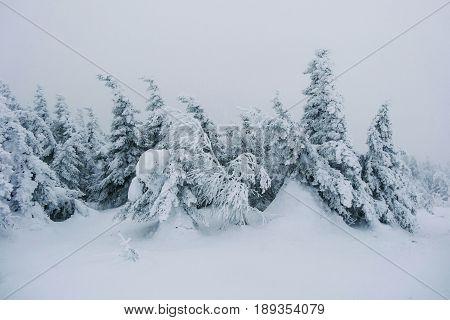 Winter ural landscape and national park winter day