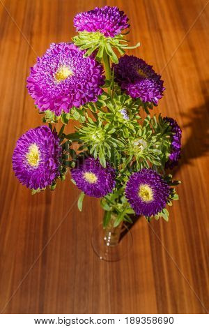 Purple Aster On A Wooden Background. Flowers View From Above On An Oak Table.