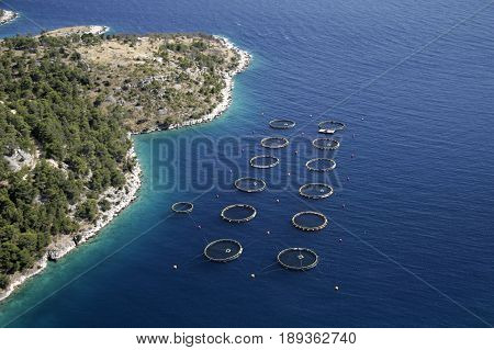Round cages for fish farming on island Brac in Croatia