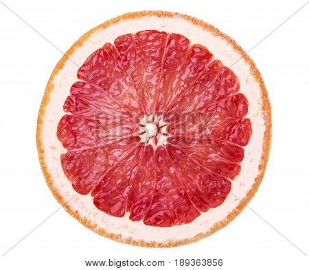 Bright Juicy Grapefruit Slice
