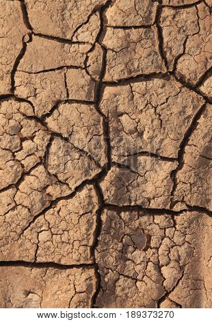 Dry cracked earth background. Clay desert texture