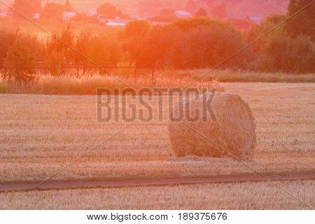 Hayrick In Sunset Light