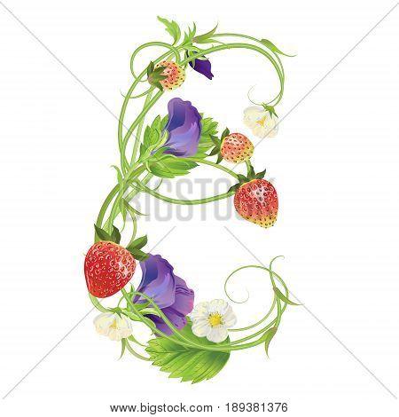 Letter E Strawberry font. Red Berry lettering alphabet. Vector realistic illustration ABC. Design for grocery, farmers market, tea, natural cosmetics, summer garden design element.