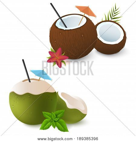 Coconut cocktails with umbrella, red flower and green leaves of mint. Brown and green. Exotic attribute of summer vacation. Isolated on white.Vector 3d illustration. Eps 10