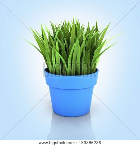 Flowerpot With Green Grass On Blue Gradient Bakground With Reflection 3D