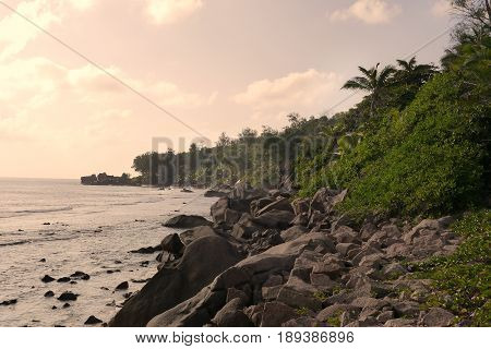 Tropical Seychelles. Palm trees and Indian Ocean of Praslin Island at sunset.