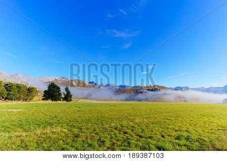 Beautiful fog covering Castle Hill in the morning between Darfield and Arthur's Pass South Island of New Zealand