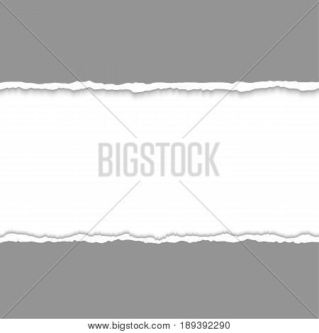Torn paper pieces background with space for text. Vector realistic illustration. Design elements - page with ripped edges