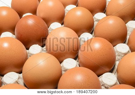 fresh brown organic eggs in an egg box