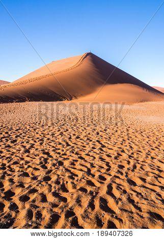 Dune 45 in Namib Desert Namib-Naukluft National Park Namibia.