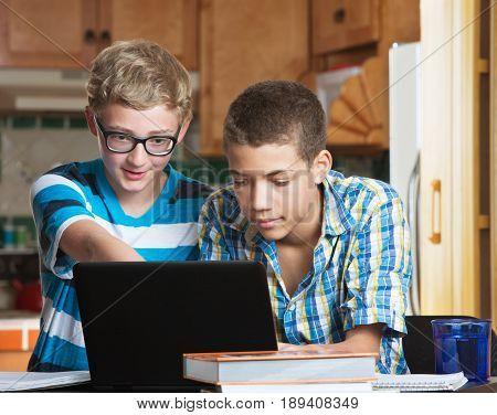 Teen Friends Doing Homework