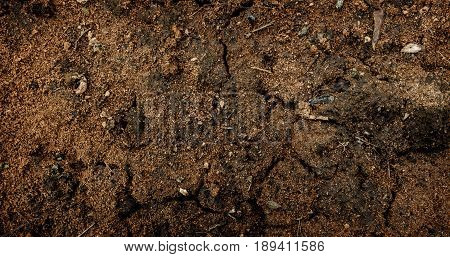 Red soil, soil background, soil texture, spring soil. Earth, earth background, ground texture. Grunge background.
