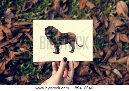 Hand Hold Lion Paper Carving with Grass Background