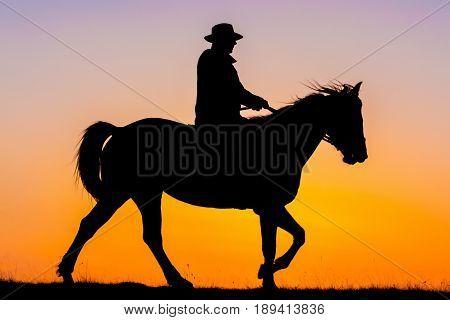 Horseback Riding In The Sunset