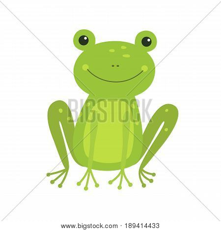 Cute green Frog cartoon isolated on white. Vector illustration for children