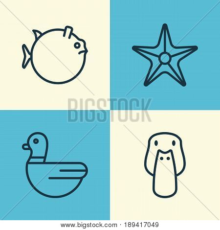 Zoo Icons Set. Collection Of Duck, Butterflyfish, Starfish And Other Elements. Also Includes Symbols Such As Starfish, Globefish, Star.