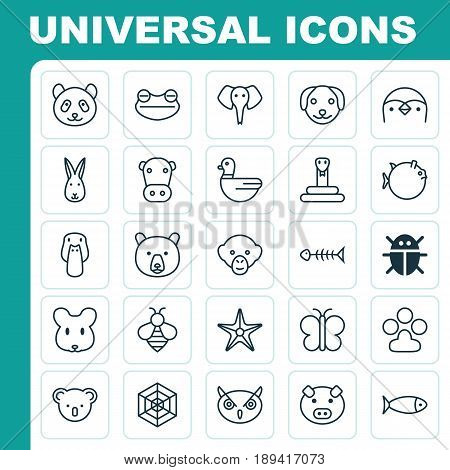 Zoology Icons Set. Collection Of Seafood Skeleton, Baboon, Rat And Other Elements. Also Includes Symbols Such As Piglet, Panda, Butterflyfish.