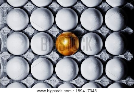 Concept of individuality exclusivity better choice. One golden egg among white eggs in carton tray top view.