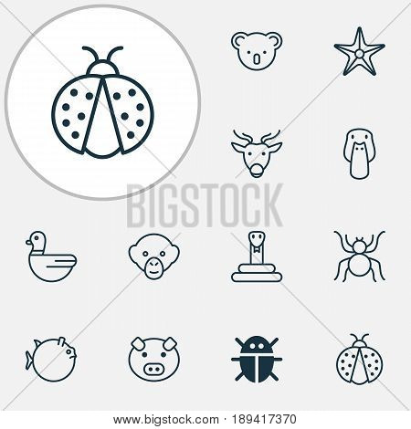 Animal Icons Set. Collection Of Piglet, Butterflyfish, Ladybird And Other Elements. Also Includes Symbols Such As Ladybird, Globefish, Piggy.