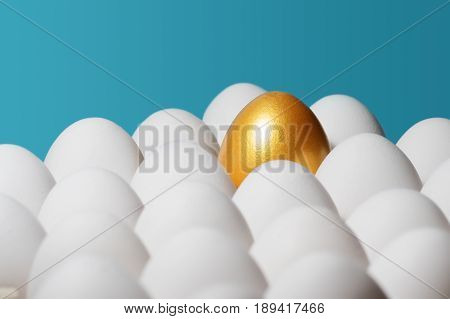 The concept of individuality exclusivity better choice. One golden egg among white eggs on blue background.