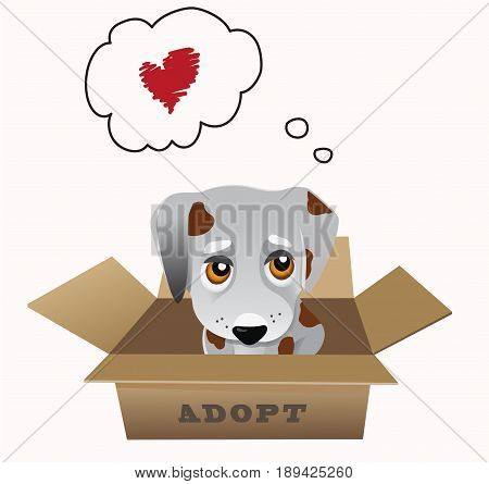 Pet adoption concept, small puppy in a box isolated on white vector illustration
