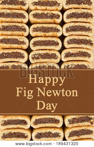 Happy Fig Newton Day greeting Fig Newtons stacked with text Happy Fig Newton Day