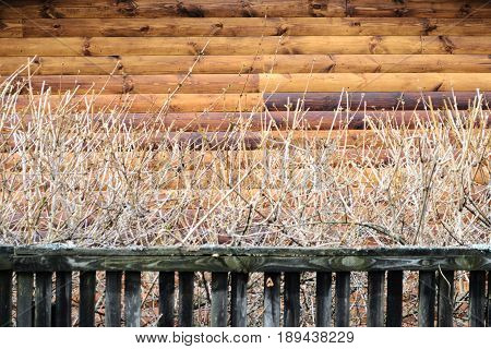 Fragment Of Rural House Wall From Unpainted Wooden Debarked Logs Wallpaper.