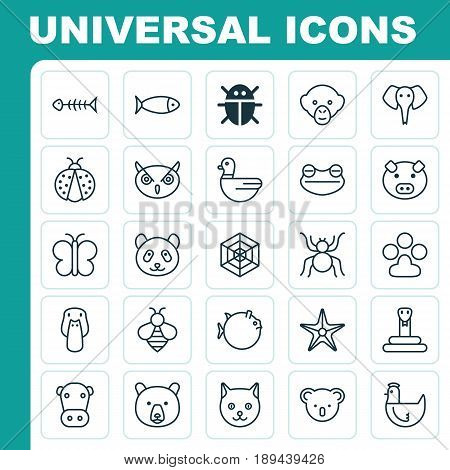 Zoology Icons Set. Collection Of Ladybird, Kine, Trunked Animal And Other Elements. Also Includes Symbols Such As Animal, Starfish, Piggy.