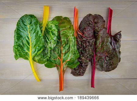 Six Leaves Of Rainbow Chard On Wooden Background