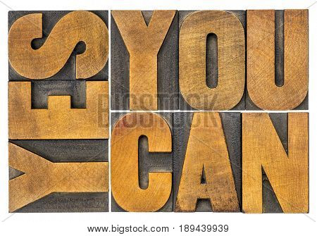 yes, you can - word abstract in letterpress wood type blocks isolated on white