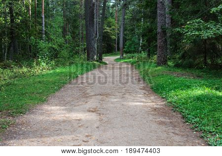 Path to the estate of Pushkin's parents in Mikhailovskoye village Pskov region Russia