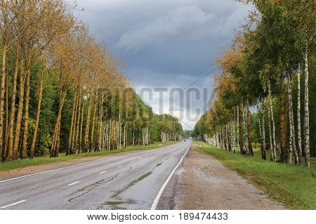 Country asphalt road in autumn near Pushkinskiye Gory Pskov region Russia