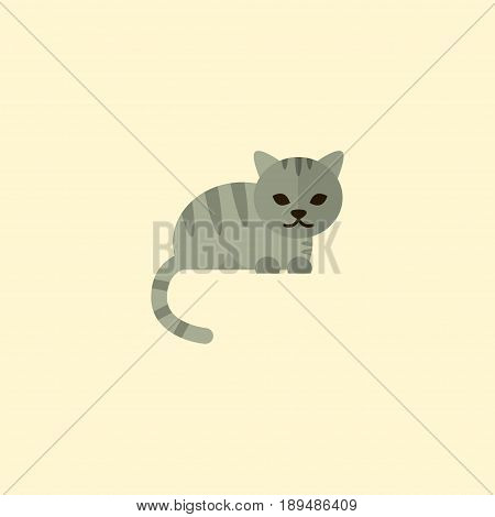 Flat Cat Element. Vector Illustration Of Flat Kitty Isolated On Clean Background. Can Be Used As Feline, Cat And Kitty Symbols.