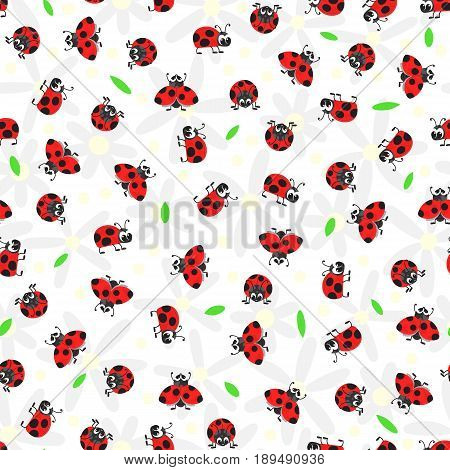 Seamless pattern with daisies leaves and ladybugs on a white background. Vector illustration.