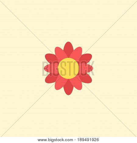 Flat Flower Element. Vector Illustration Of Flat Blossom  Isolated On Clean Background. Can Be Used As Flower, Blossom And Flora Symbols.