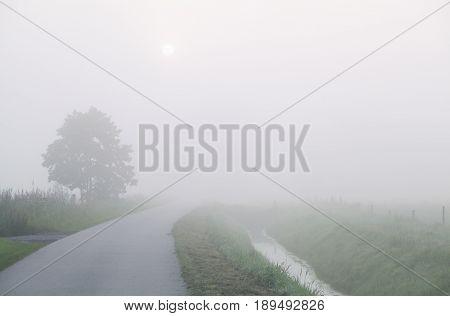 countryside road in dense fog in Netherlands