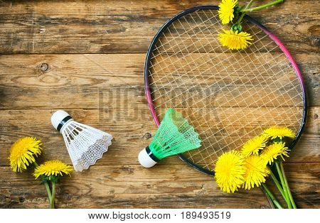 Racket badminton and two shuttlecock on a wooden table dandelions summer sport vacation concept